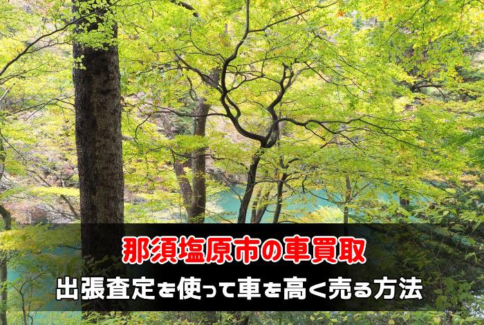 那須塩原市で車買取業者に出張査定を使って車を高く売る方法:サムネイル