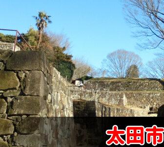 太田市で債務整理・任意整理の費用が安いと評判の事務所を選ぶべき?