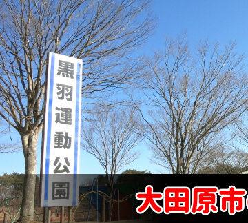 大田原市で債務整理・任意整理の費用が安いと評判の事務所を選ぶべき?