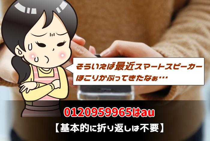 0120959965はau