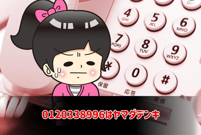 0120338996はヤマダデンキ