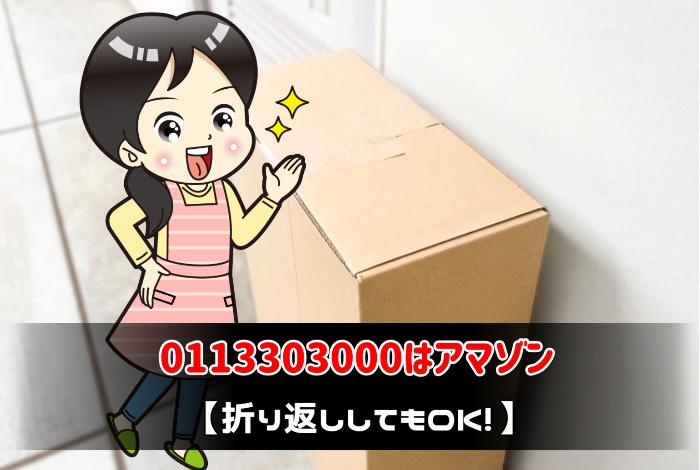 0113303000はアマゾン【折り返ししてもOK!】