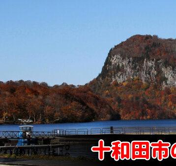 十和田市で債務整理・任意整理の費用が安いと評判の事務所を選ぶべき?